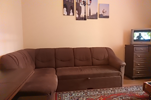 1-комнатная квартира посуточно в Львове. Франковский район, ул. Городоцкая, 175. Фото 1