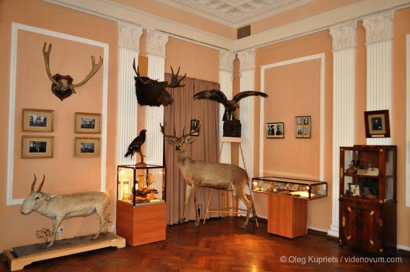 Квартиры_посуточно_возле_музея_Тавриды.JPG
