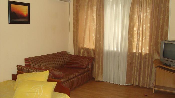 1-комнатная квартира посуточно в Днепропетровске. Октябрьский район, ул. Лизы Чайкиной, 1. Фото 1