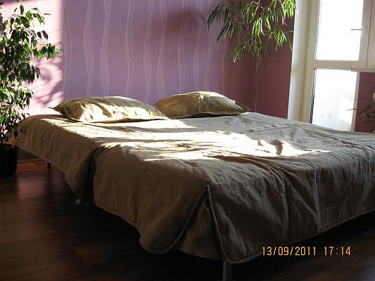 1-комнатная квартира посуточно в Днепропетровске. Октябрьский район, Запорожское шоссе, 19. Фото 1