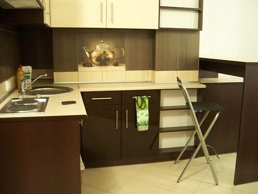 1-комнатная квартира посуточно в Львове. Галицкий район, ул. Саксаганского, 6. Фото 1