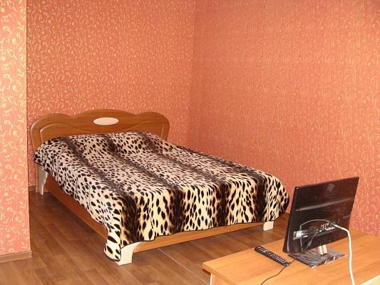 1-комнатная квартира посуточно в Голой Пристани. ул. Пушкина, 2. Фото 1