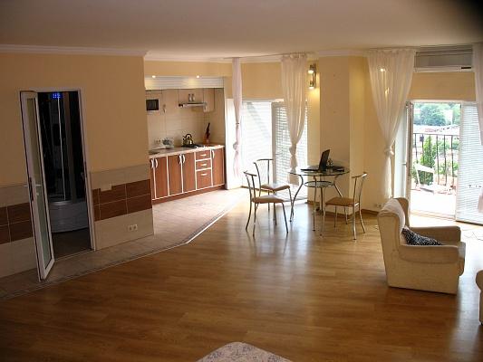 1-комнатная квартира посуточно в Одессе. Приморский район, ул. Маршала Говорова, 10Б. Фото 1