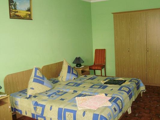1-комнатная квартира посуточно в Львове. Шевченковский район, ул. Мазепи. Фото 1