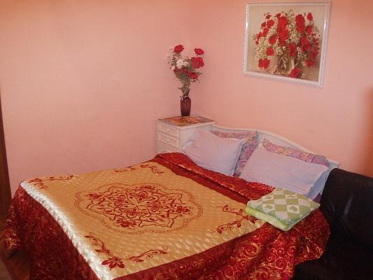 1-комнатная квартира посуточно в Житомире. ул. Театральная, 9. Фото 1