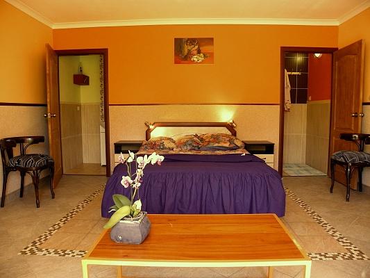 1-комнатная квартира посуточно в Моршине. ул. Привокзальная, 35а. Фото 1