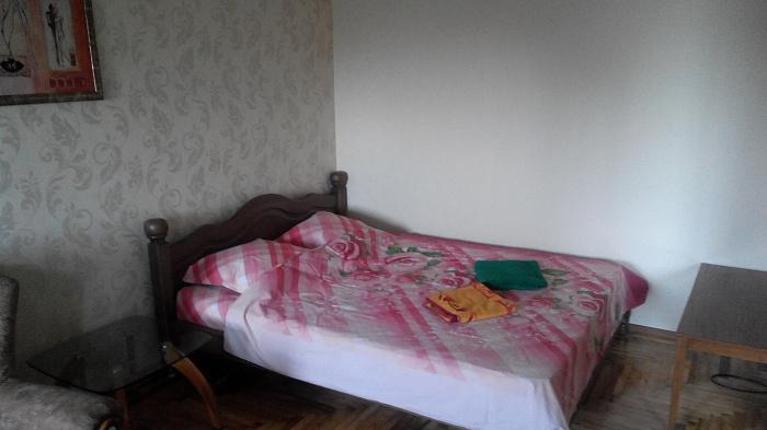 1-комнатная квартира посуточно в Запорожье. Орджоникидзевский район, ул. Патриотическая, 82-А. Фото 1