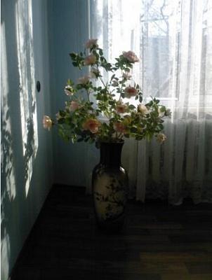 1-комнатная квартира посуточно в Горловке. пр-т Победы, 87. Фото 1