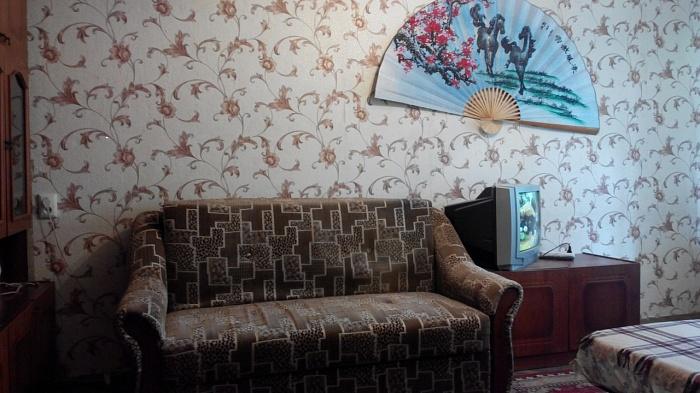 1-комнатная квартира посуточно в Киеве. Шевченковский район, ул. И.Турчина (В.Блюхера), 12. Фото 1