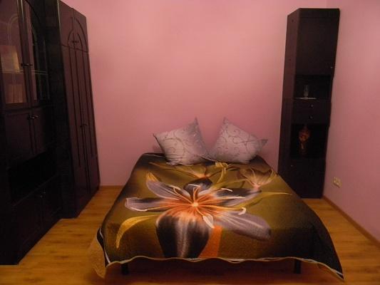 1-комнатная квартира посуточно в Львове. Шевченковский район, ул. Батуринская, 5. Фото 1