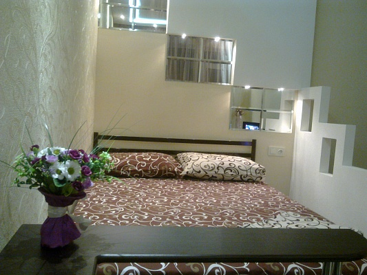 1-комнатная квартира посуточно в Донецке. Ворошиловский район, ул. Челюскинцев, 148. Фото 1