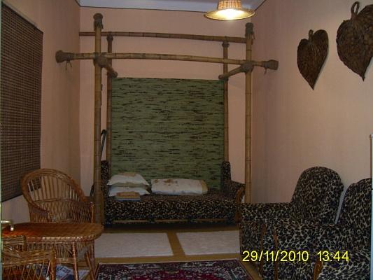 1-комнатная квартира посуточно в Ужгороде. ул. Другетов, 60. Фото 1