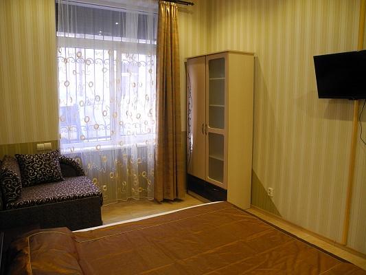 1-комнатная квартира посуточно в Львове. Галицкий район, ул. Снежная, 7. Фото 1