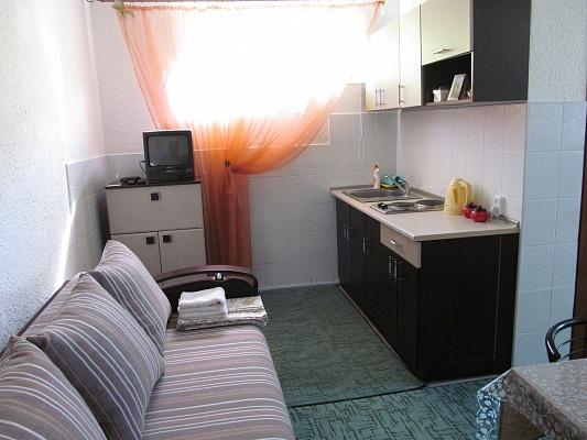 1-комнатная квартира посуточно в Черновцах. ул. Главная, 283. Фото 1