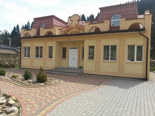 1-комнатная квартира посуточно в Сходнице. podyhkarpat.com.ua. Фото 1