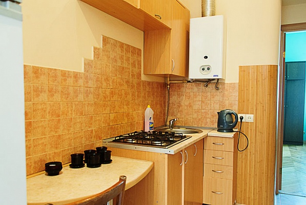 1-комнатная квартира посуточно в Львове. Железнодорожный район, ул. Декарта, 14. Фото 1
