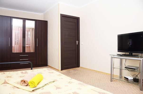 1-комнатная квартира посуточно в Киеве. Печерский район, ул. Арсенальная, 20. Фото 1