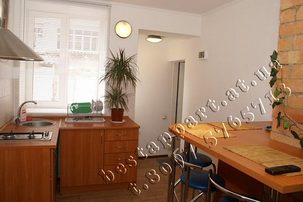 1-комнатная квартира посуточно в Одессе. Приморский район, Французкий б-р. Фото 1