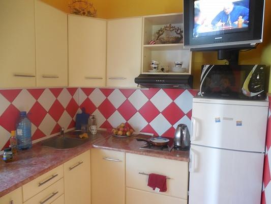 1-комнатная квартира посуточно в Трускавце. ул. Дрогобычская, 10б. Фото 1