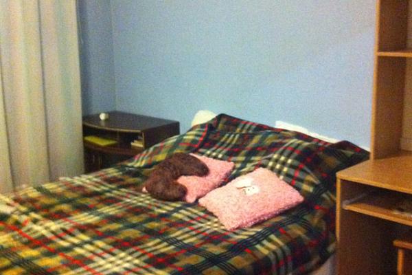 2-комнатная квартира посуточно в Каменце-Подольском. ул. Гагарина, 71. Фото 1
