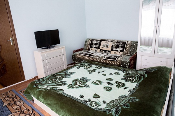 1-комнатная квартира посуточно в Черновцах. Первомайский район, ул. Кишеневская, 56. Фото 1