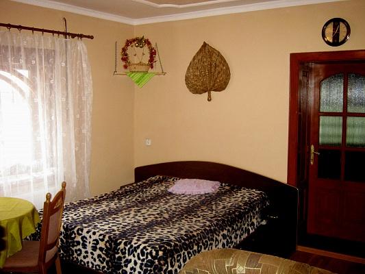 1-комнатная квартира посуточно в Берегово. ул. Мукачевская, 15. Фото 1