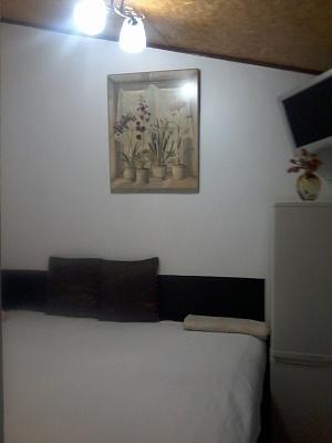 1-комнатная квартира посуточно в Одессе. Приморский район, ул. Дерибасовская, 16. Фото 1