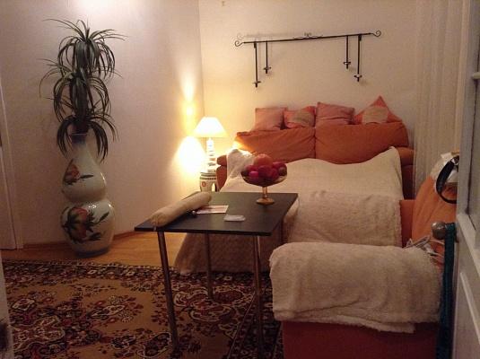 1-комнатная квартира посуточно в Одессе. Малиновский район, ул. Разумовская, 22. Фото 1