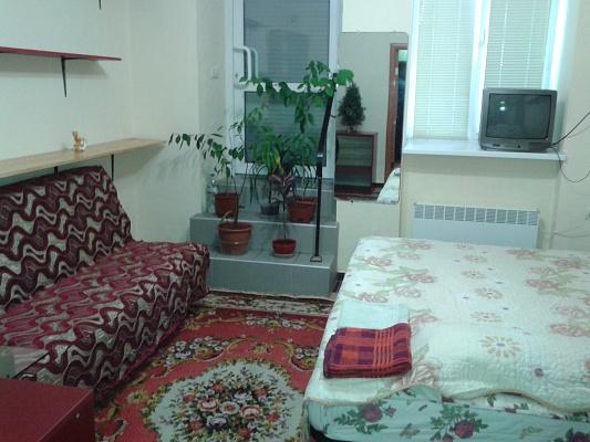 1-комнатная квартира посуточно в Львове. Галицкий район, ул. Менделеева, 11. Фото 1