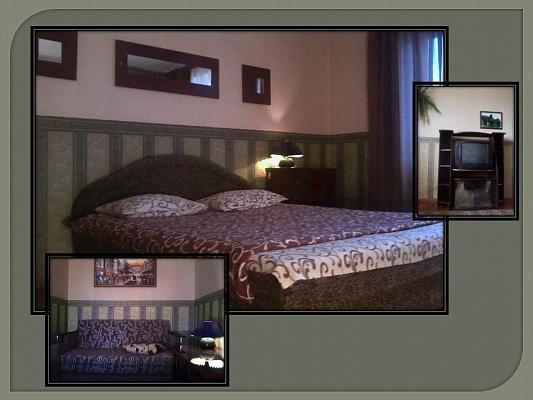 1-комнатная квартира посуточно в Запорожье. Шевченковский район, ул. Бочарова, 3. Фото 1