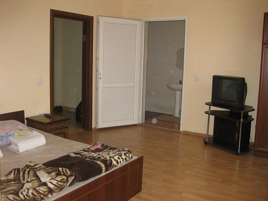 1-комнатная квартира посуточно в Мукачево. ул. Береговская, 3. Фото 1