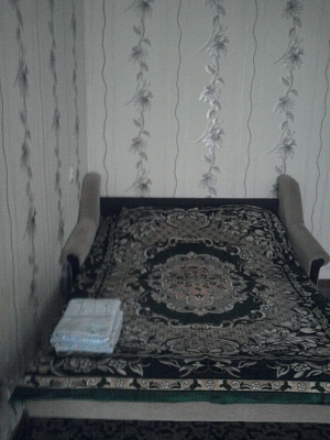 1-комнатная квартира посуточно в Днепропетровске. Кировский район, Днепропетровск, Набережная Ленина ,, 15. Фото 1