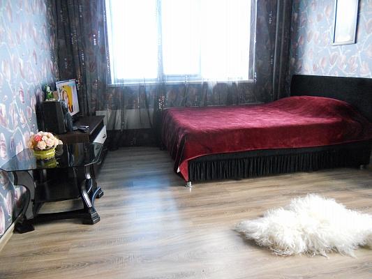1-комнатная квартира посуточно в Киеве. Деснянский район, ул. Драйзера, 6а. Фото 1