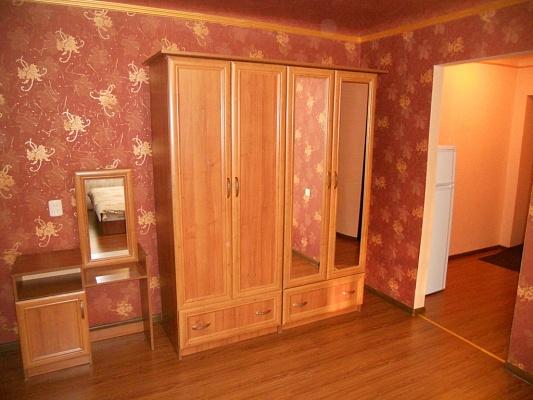 1-комнатная квартира посуточно в Донецке. Киевский район, ул. Челюскинцев, 208. Фото 1