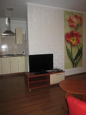1-комнатная квартира посуточно в Днепропетровске. Бабушкинский район, московская, 27. Фото 1