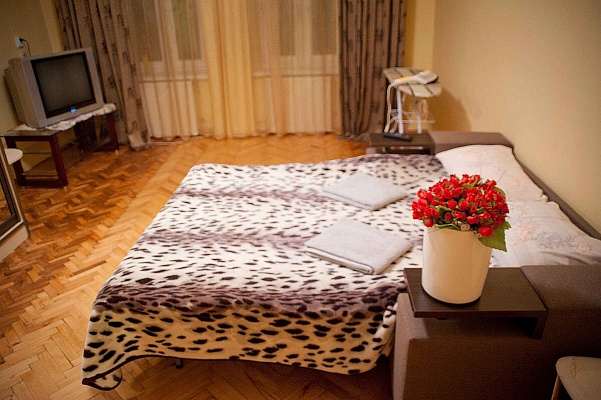 1-комнатная квартира посуточно в Львове. Шевченковский район, ул. Замарстиновская, 68 А. Фото 1