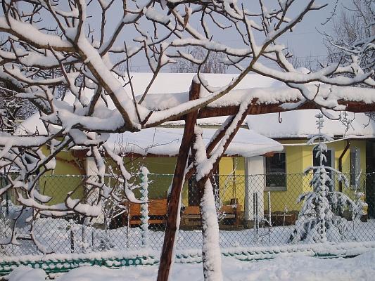 Дом  посуточно в Мукачево. Илоны Зрини, 179. Фото 1