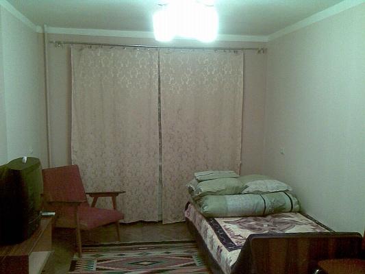 1-комнатная квартира посуточно в Ужгороде. ул. Новаи, 3. Фото 1