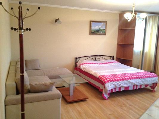 1-комнатная квартира посуточно в Донецке. Киевский район, ул. Росини, 6. Фото 1