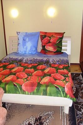 1-комнатная квартира посуточно в Черкассах. ул. Байды Вишневецкого, 60. Фото 1