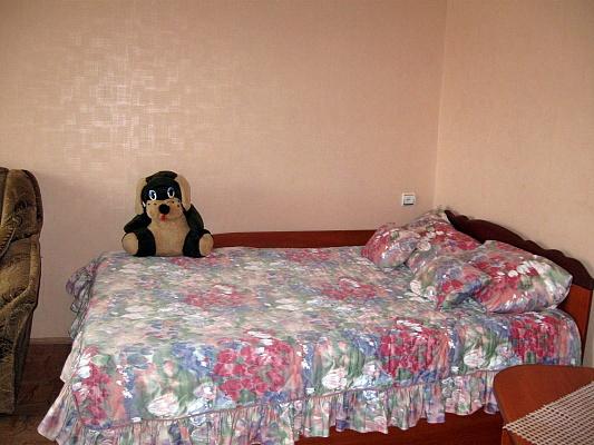 1-комнатная квартира посуточно в Житомире. ул. Cоборная, 2. Фото 1
