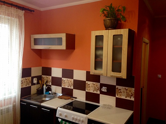 1-комнатная квартира посуточно в Трускавце. ул. Михаила Грушевского, 3. Фото 1