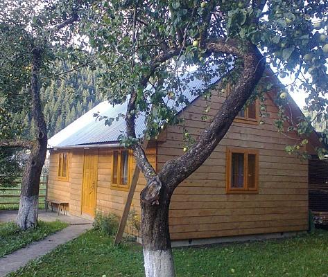 2-комнатная квартира посуточно в Верховине. с. Криворовня, 1. Фото 1