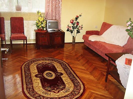 1-комнатная квартира посуточно в Львове. Шевченковский район, ул. Чорновола, 43. Фото 1