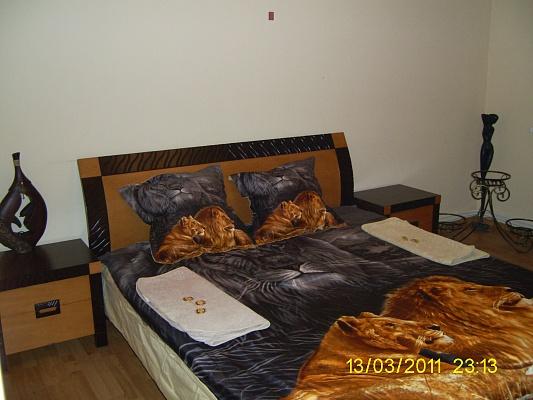 2-комнатная квартира посуточно в Ужгороде. можайского. Фото 1