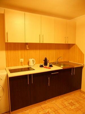 1-комнатная квартира посуточно в Львове. Галицкий район, ул. Менцинского, 8. Фото 1