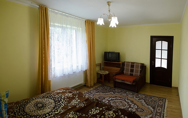 1-комнатная квартира посуточно в Трускавце. ул. Данилишиних, 34-2. Фото 1