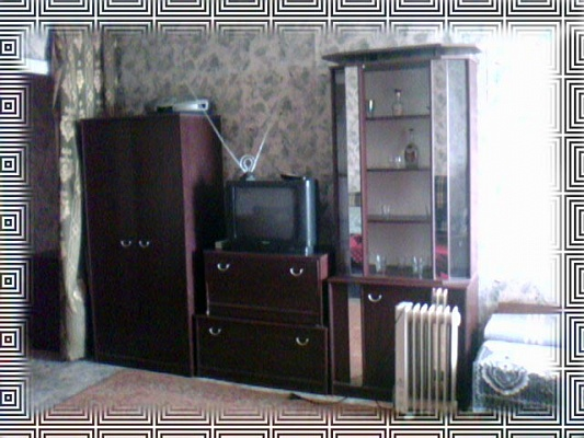 1-комнатная квартира посуточно в Донецке. Калининский район, Разенкова, 16. Фото 1