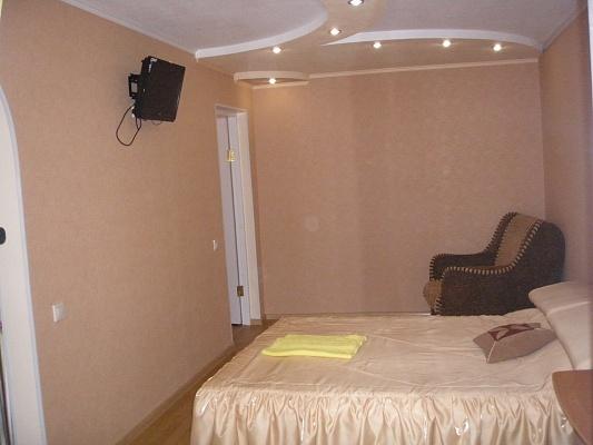 1-комнатная квартира посуточно в Донецке. Киевский район, ул. Челюскинцев, 200. Фото 1