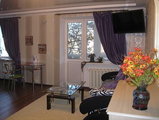 1-комнатная квартира посуточно в Николаеве. Центральный район, ул. Малая-Морская, 23. Фото 1